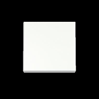 Полярный белый