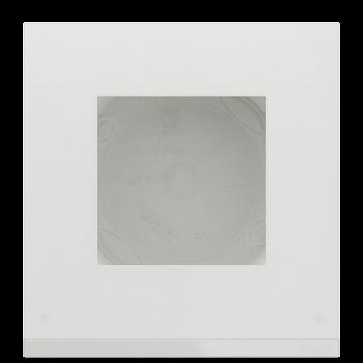Матовое стекло/белый